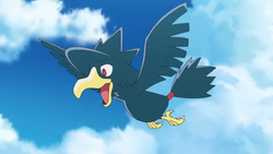 Murkrow anime.png