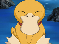 Emily Psyduck.png