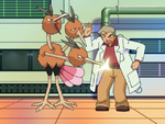 Professor Oak Lecture DP119.png