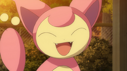 Skitty anime.png