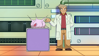 Professor Oak Lecture DP170.png