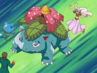 May Venusaur.png