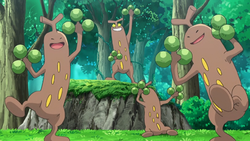 Aether Paradise Sudowoodo.png