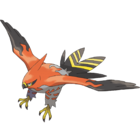 663Talonflame.png