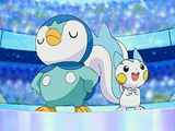 Piplup Pachirisu Hearthome Contest.png