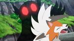 Nanu Sableye Shadow Sneak.png