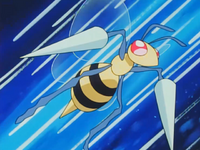 Jeanette Fisher's Beedrill