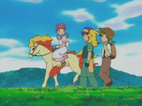 Nurse Joy's Ponyta