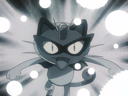 Black Arachnid Meowth Pay Day.png