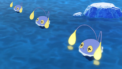 Chinchou anime.png