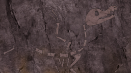 Fossilized Bird anime.png