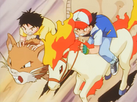 Big P Pokémon Race Raticate.png
